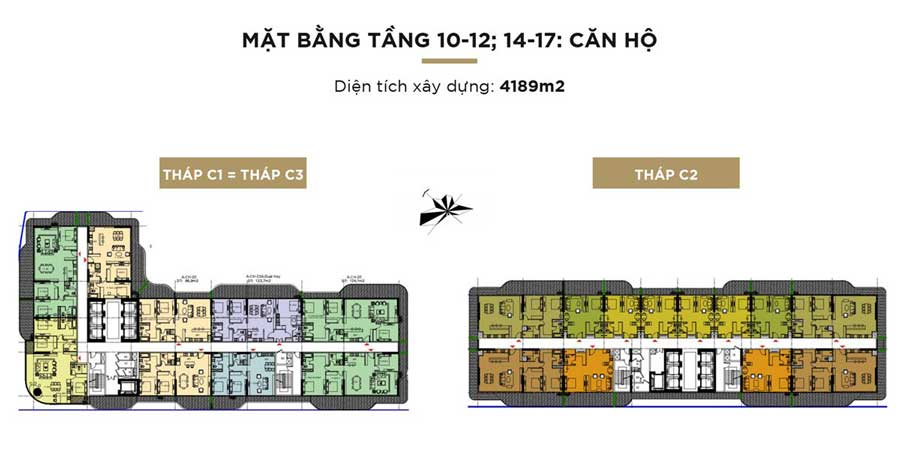 tang 10-12