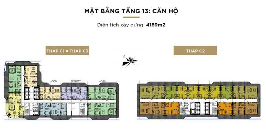 tang 13